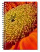 Sunflower Fire 1 Spiral Notebook