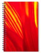 Sunflower Fire 3 Spiral Notebook