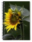 Sunflower Fractalius Beauty Spiral Notebook