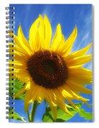 Sunflower Glow Spiral Notebook