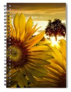 Sunflower Heaven Spiral Notebook