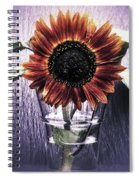 Sunflower In A Cup Spiral Notebook