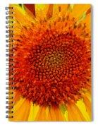 Sunflower In The Sun Spiral Notebook