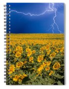 Sunflower Lightning Field  Spiral Notebook