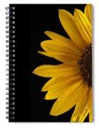 Sunflower Number 3 Spiral Notebook