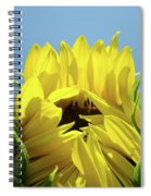 Sunflower Opening Sunny Summer Day 1 Giclee Art Prints Baslee Troutman Spiral Notebook