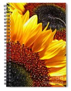 Sunflower Rise Spiral Notebook