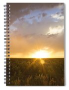 Sunflower Set Spiral Notebook