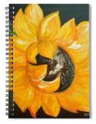 Sunflower Solo Spiral Notebook