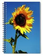 Sunflower Stand Alone Spiral Notebook