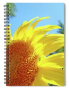 Sunflower Sunlit Art Print Canvas Sun Flowers Baslee Troutman Spiral Notebook