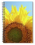 Sunflower Sunlit Sun Flowers Giclee Art Prints Baslee Troutman Spiral Notebook