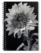 Sunflower Sutra Spiral Notebook