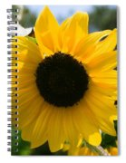 Sunflower With Bee Spiral Notebook