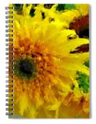Sunflowers - Light And Dark Spiral Notebook