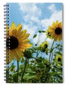Sunflowers And The Bee Spiral Notebook