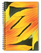 Sunflowers Corners Spiral Notebook
