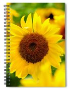 Sunflowers I Spiral Notebook