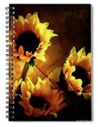 Sunflowers In Shadow Spiral Notebook