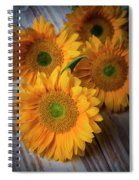 Sunflowers On White Boards Spiral Notebook