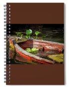 Sunk Spiral Notebook