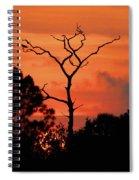 Sunken Sun Spiral Notebook