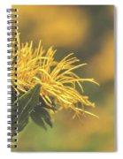 Sunkissed Spiral Notebook
