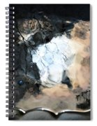 Sunlight And Clouds Reflected In The Birdbath Spiral Notebook