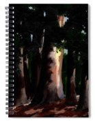 Sunlight And Shadows - Eucalyptus Majesties Spiral Notebook