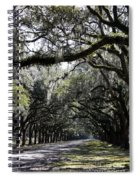Sunlight And Shadows On Live Oaks Spiral Notebook