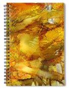 Sunlight Dancing In The Aspen Forest Spiral Notebook