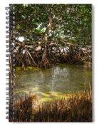 Sunlight In Mangrove Forest Spiral Notebook