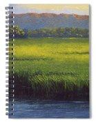 Sunlight On The Marsh Spiral Notebook
