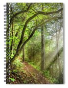 Sunlight On The Trail Spiral Notebook
