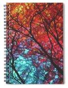 Sunlight Beyond Spiral Notebook
