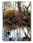 Sunlight Through Japanese Maple Spiral Notebook