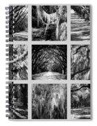 Sunlight Through Live Oaks Collage Spiral Notebook