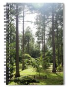 Sunlight Through The Trees Spiral Notebook