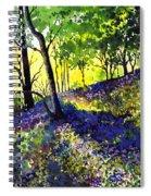 Sunlit Bluebell Wood Spiral Notebook