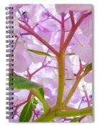 Sunlit Hydrangea Flowers Garden Art Prints Baslee Troutman Spiral Notebook
