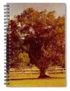 Sunlit Landscape Spiral Notebook