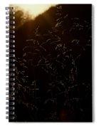 Sunlit Spiral Notebook