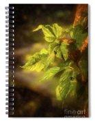 Sunlit Leaves Spiral Notebook