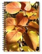 Sunlit Lilac Leaves Spiral Notebook