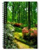 Sunlit Path Spiral Notebook