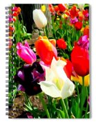 Sunlit Tulips Spiral Notebook