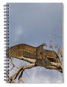 Sunning Spiral Notebook