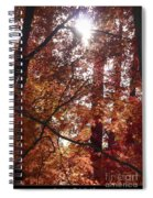 Sunny Autumn Day Poster Spiral Notebook