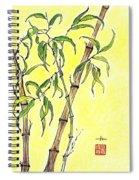 Sunny Bamboo Spiral Notebook