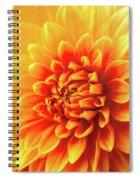 Sunny Dahlia Spiral Notebook